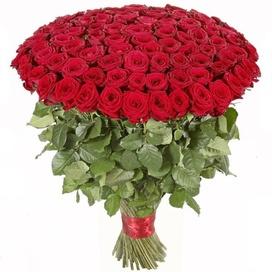 Красные розы (60см)