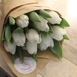 9 белых тюльпанов